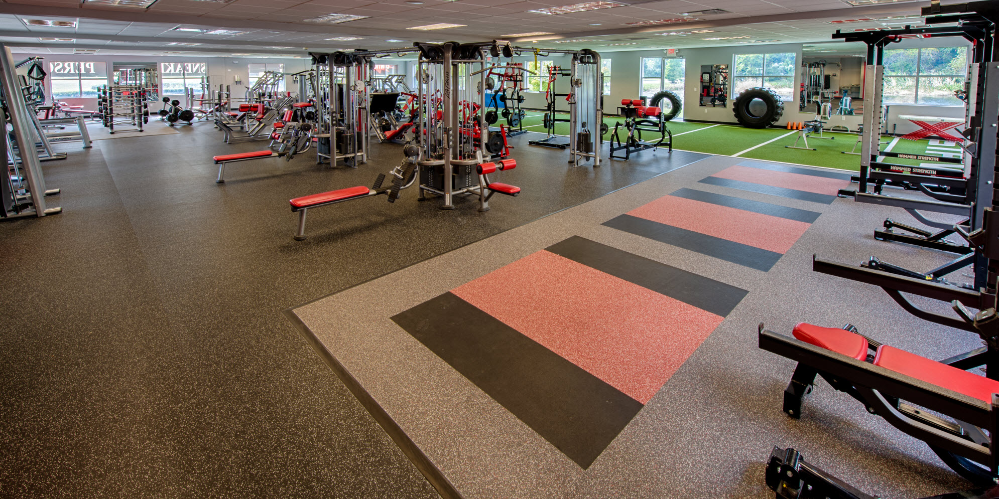 Strive Athletic Club Tampa Gym & Health